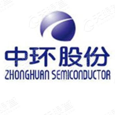 天津中环半导体股份有限公司